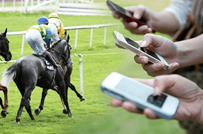 Horse racing betting in New Zealand.