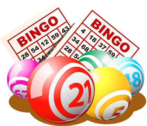 Bingo Strategy for Kiwis